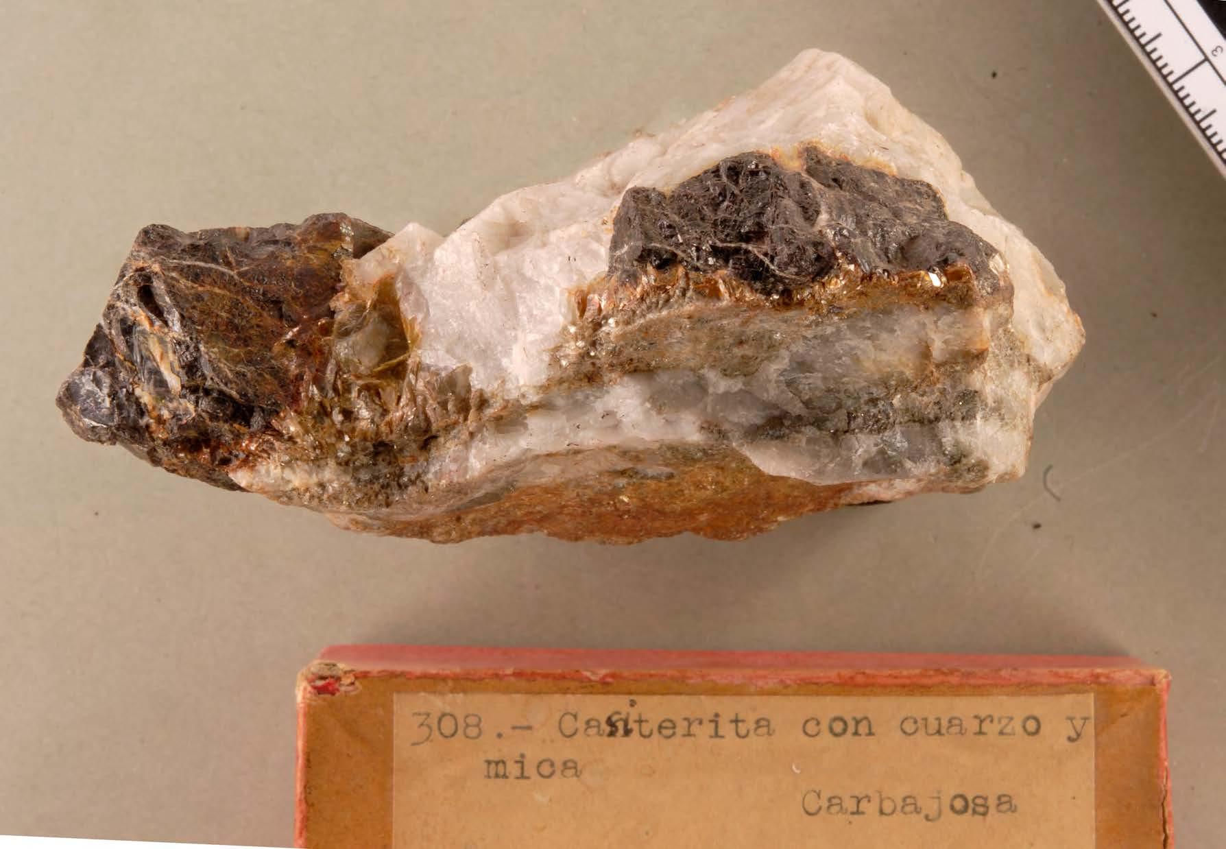 MCNUZ-LM-2_Página_054