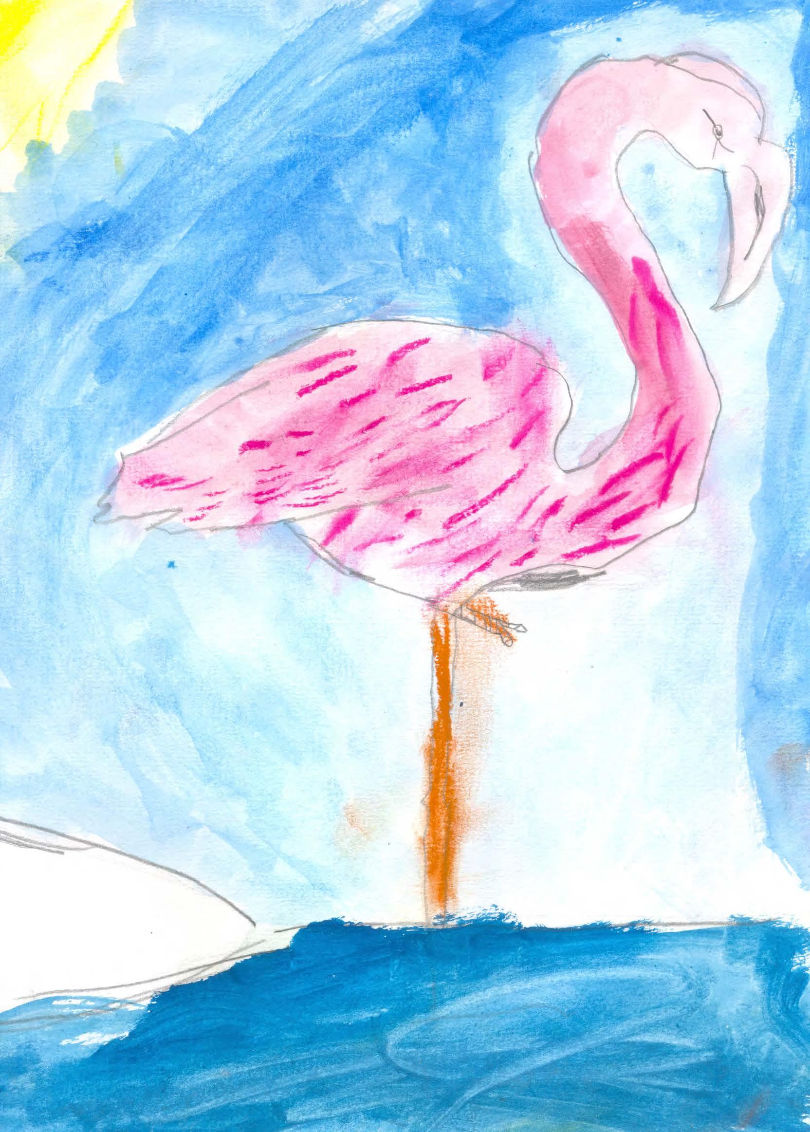 II concurso de jóvenes artistas 2017 (166)