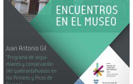 """13 de dic. Encuentros en el Museo: Juan Antonio Gil, """"Programa de seguimiento y conservación del quebrantahuesos en los Pirineos y Picos de Europa"""""""